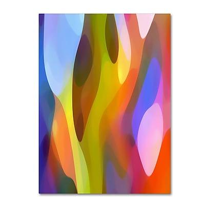 Trademark Fine Art ''Dappled Light 3'' by Amy Vangsgard 18