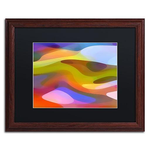 """Trademark Fine Art ''Dappled Light 9'' by Amy Vangsgard  16"""" x 20"""" Black Matted Wood Frame (AV0108-W1620BMF)"""