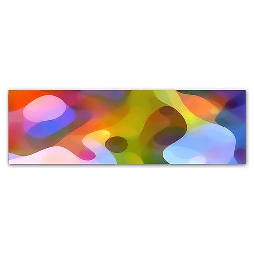 "Trademark Fine Art ''Dappled Light Panoramic 2'' by Amy Vangsgard  10"" x 32"" Canvas Art (AV0117-C1032GG)"