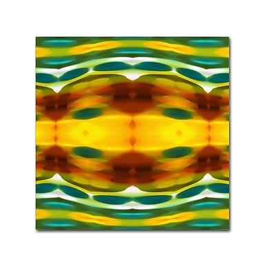 Trademark Fine Art ''Fury Pattern 5'' by Amy Vangsgard 24