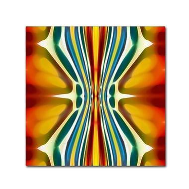 Trademark Fine Art ''Fury Pattern 6'' by Amy Vangsgard 24