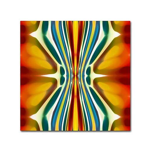 "Trademark Fine Art ''Fury Pattern 6'' by Amy Vangsgard  35"" x 35"" Canvas Art (AV0130-C3535GG)"