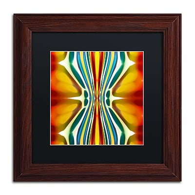 Trademark Fine Art ''Fury Pattern 6'' by Amy Vangsgard 11