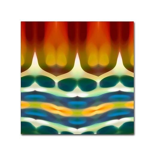 "Trademark Fine Art ''Fury Pattern 7'' by Amy Vangsgard  14"" x 14"" Canvas Art (AV0131-C1414GG)"
