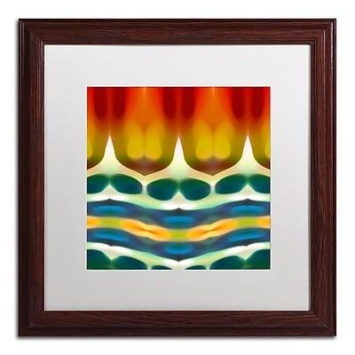 Trademark Fine Art ''Fury Pattern 7'' by Amy Vangsgard 16