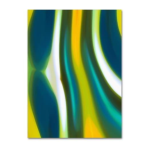 "Trademark Fine Art ''Fury Stream 1'' by Amy Vangsgard  35"" x 47"" Canvas Art (AV0136-C3547GG)"