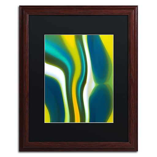 "Trademark Fine Art ''Fury Stream 2'' by Amy Vangsgard  16"" x 20"" Black Matted Wood Frame (AV0137-W1620BMF)"