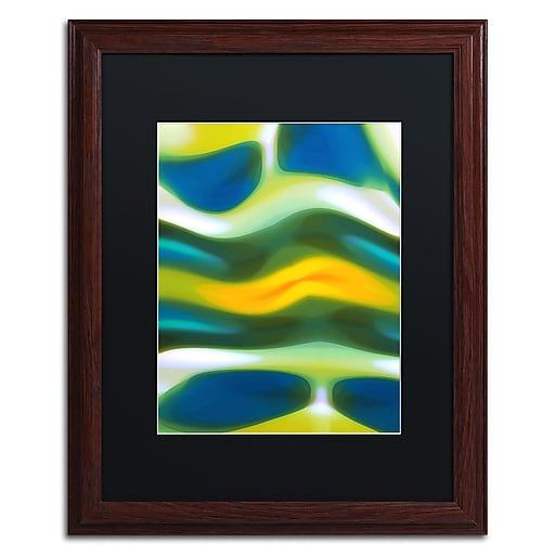 "Trademark Fine Art ''Fury Stream 3'' by Amy Vangsgard  16"" x 20"" Black Matted Wood Frame (AV0138-W1620BMF)"