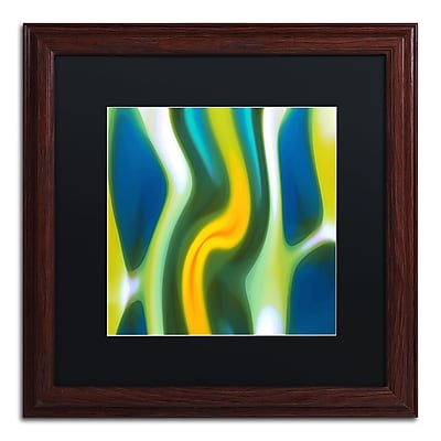 Trademark Fine Art ''Fury Stream 8'' by Amy Vangsgard 16
