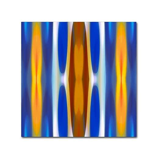 """Trademark Fine Art ''Winter Forest Square 1'' by Amy Vangsgard  14"""" x 14"""" Canvas Art (AV0145-C1414GG)"""