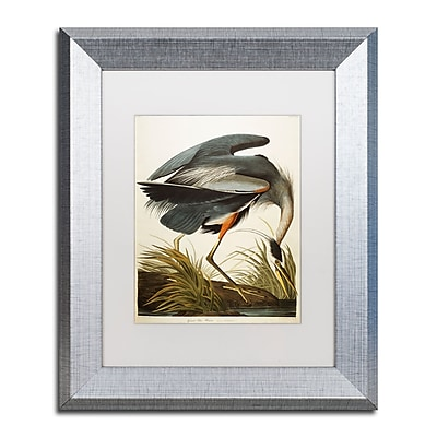 Trademark Fine Art ''Great Blue Heron'' by John James Audubon 11
