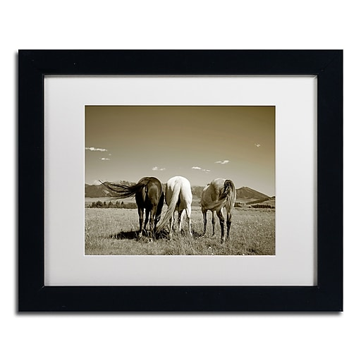 "Trademark Fine Art ''Three Horses'' by Preston 11"" x 14"" White Matted Black Frame (EM0513-B1114MF)"