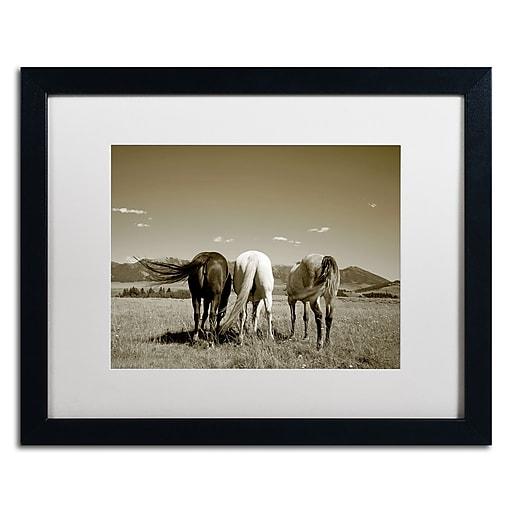 "Trademark Fine Art ''Three Horses'' by Preston 16"" x 20"" White Matted Black Frame (EM0513-B1620MF)"