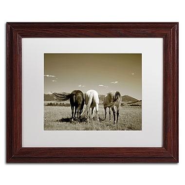 Trademark Fine Art ''Three Horses'' by Preston 11