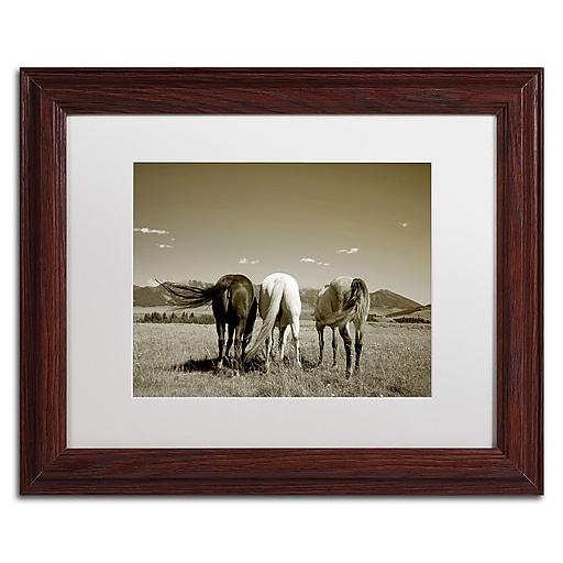 "Trademark Fine Art ''Three Horses'' by Preston 11"" x 14"" White Matted Wood Frame (EM0513-W1114MF)"