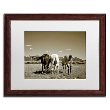Trademark Fine Art ''Three Horses'' by Preston 16