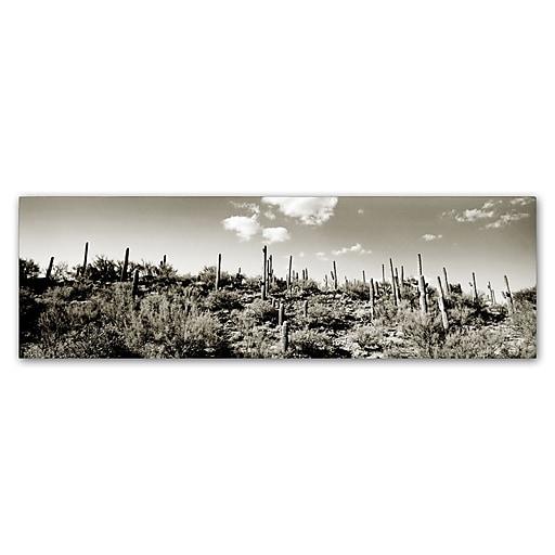 "Trademark Fine Art ''Desert'' by Preston 6"" x 19"" Canvas Art (EM0514-C619GG)"