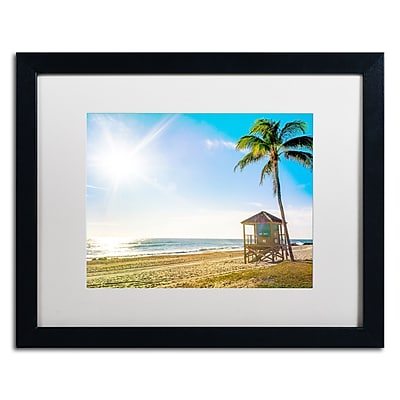 Trademark Fine Art ''Florida Beach Palm'' by Preston 16