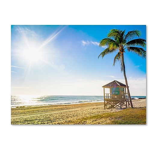 "Trademark Fine Art ''Florida Beach Palm'' by Preston 14"" x 19"" Canvas Art (EM0521-C1419GG)"