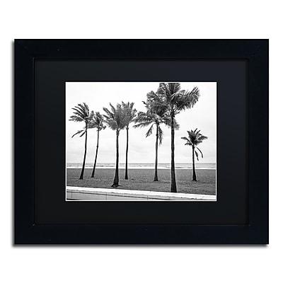 Trademark Fine Art ''Florida BW Beach Palms'' by Preston 11