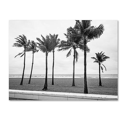 "Trademark Fine Art ''Florida BW Beach Palms'' by Preston 18"" x 24"" Canvas Art (EM0524-C1824GG)"