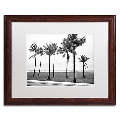 Trademark Fine Art ''Florida BW Beach Palms'' by Preston 16