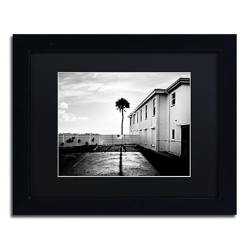 "Trademark Fine Art ''Florida Lone Palm'' by Preston 11"" x 14"" Black Matted Black Frame (EM0525-B1114BMF)"
