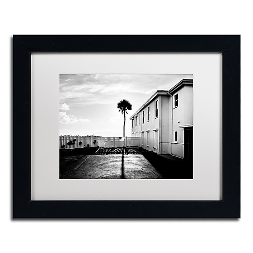 "Trademark Fine Art ''Florida Lone Palm'' by Preston 11"" x 14"" White Matted Black Frame (EM0525-B1114MF)"