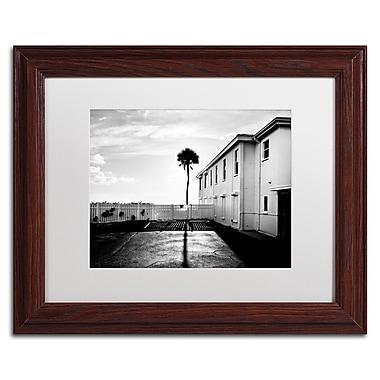 Trademark Fine Art ''Florida Lone Palm'' by Preston 11