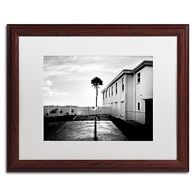 Trademark Fine Art ''Florida Lone Palm'' by Preston 16
