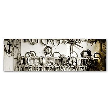 Trademark Fine Art ''Horse Shoes'' by Preston 8