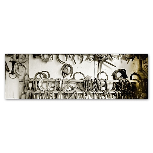 "Trademark Fine Art ''Horse Shoes'' by Preston 16"" x 47"" Canvas Art (EM0531-C1647GG)"