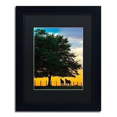 Trademark Fine Art ''Horse Sunset'' by Preston 11