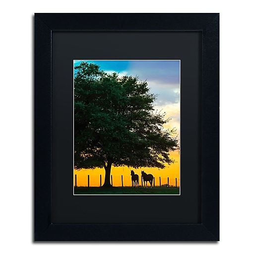 "Trademark Fine Art ''Horse Sunset'' by Preston 11"" x 14"" Black Matted Black Frame (EM0532-B1114BMF)"