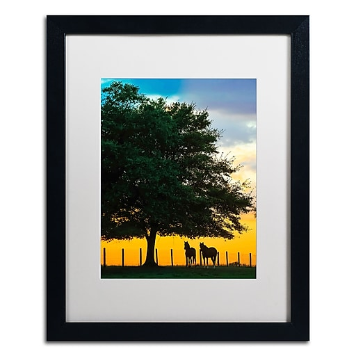 "Trademark Fine Art ''Horse Sunset'' by Preston 16"" x 20"" White Matted Black Frame (EM0532-B1620MF)"