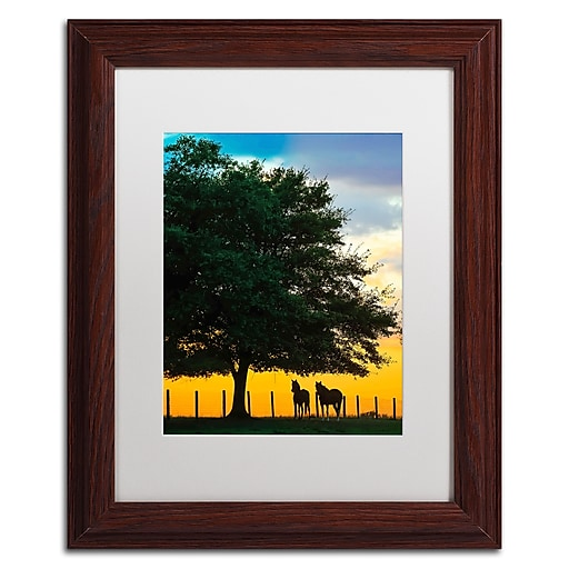 "Trademark Fine Art ''Horse Sunset'' by Preston 11"" x 14"" White Matted Wood Frame (EM0532-W1114MF)"