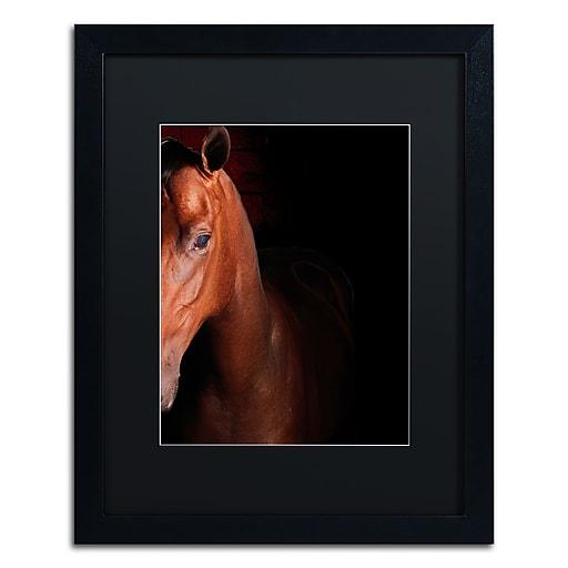 "Trademark Fine Art ''Kentucky horse Intense'' by Preston 16"" x 20"" Black Matted Black Frame (EM0535-B1620BMF)"