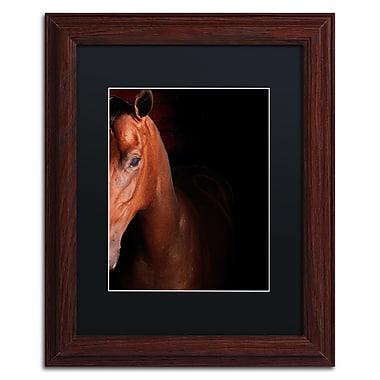 Trademark Fine Art ''Kentucky horse Intense'' by Preston 11