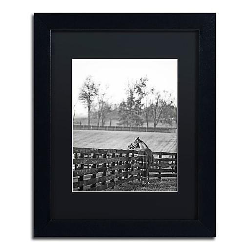 "Trademark Fine Art ''Kentucky Horse Sunrise BW'' by Preston 11"" x 14"" Black Matted Black Frame (EM0537-B1114BMF)"