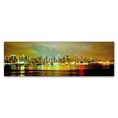 Trademark Fine Art ''Panoramic'' by Preston 6