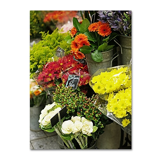 "Trademark Fine Art ''Parisian Flowers'' by Preston 35"" x 47"" Canvas Art (EM0558-C3547GG)"