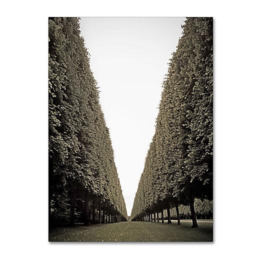 "Trademark Fine Art ''Parisian Versailles Trees'' by Preston 18"" x 24"" Canvas Art (EM0563-C1824GG)"