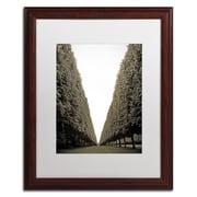 "Trademark Fine Art ''Parisian Versailles Trees'' by Preston 16"" x 20"" White Matted Wood Frame (EM0563-W1620MF)"