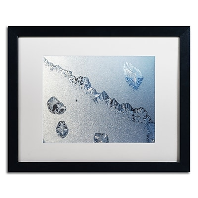 Trademark Fine Art ''Amazing Frost on a Window'' by Kurt Shaffer 16