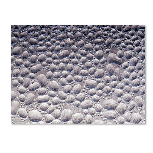 "Trademark Fine Art ''Condensation on a Cold Window 2'' by Kurt Shaffer 18"" x 24"" Canvas Art (KS01065-C1824GG)"