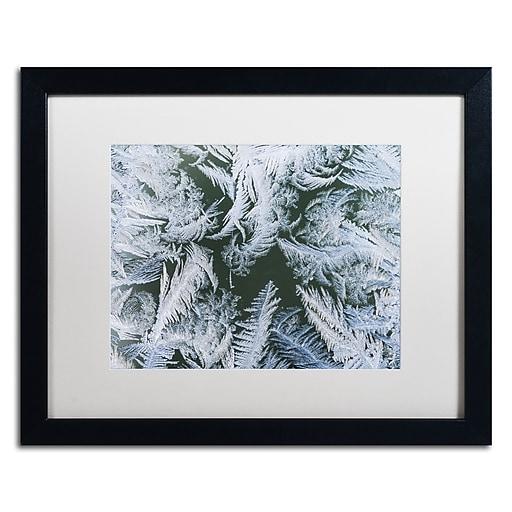 """Trademark Fine Art ''Frost at Zero Degrees'' by Kurt Shaffer 16"""" x 20"""" White Matted Black Frame (KS01069-B1620MF)"""