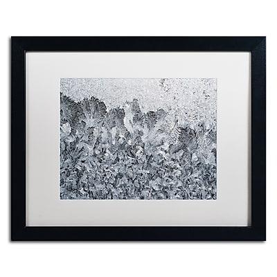 Trademark Fine Art ''Frost Mosaic 2'' by Kurt Shaffer 16