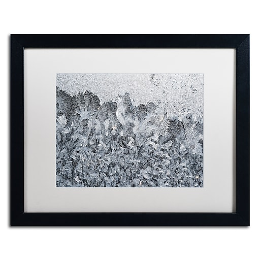 "Trademark Fine Art ''Frost Mosaic 2'' by Kurt Shaffer 16"" x 20"" White Matted Black Frame (KS01071-B1620MF)"