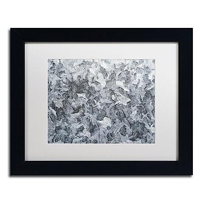 Trademark Fine Art ''Frost Mosaic'' by Kurt Shaffer 11
