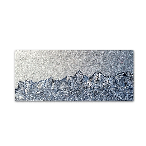 "Trademark Fine Art ''Frost Mountain Range'' by Kurt Shaffer 14"" x 32"" Canvas Art (KS01073-C1432GG)"